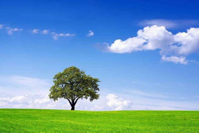 安徽完成中央环保督察反馈意见近七成问题的整改