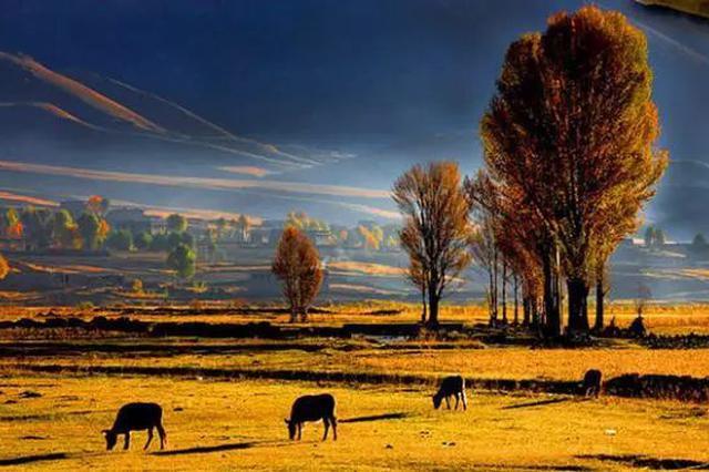 适合旅居的15个川藏小镇