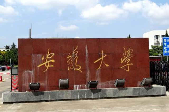 安大新闻传播学院原院长芮必峰打伤同校教授 被拘10天
