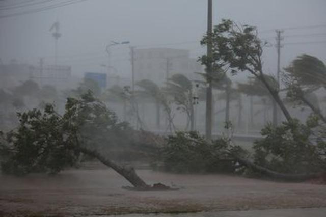 受强台风影响 合肥直属站停运33趟列车