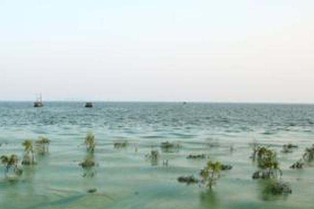 合肥水环境污染罚款上限 从10万提高至100万