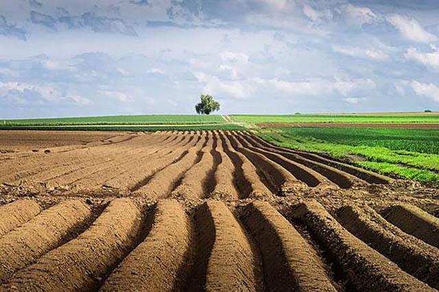"""安徽省对土地利用设""""高压线"""" 土地利用须符合总体规划"""