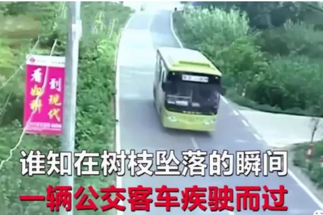 男子砸坏公交车 政府反而奖励他300元