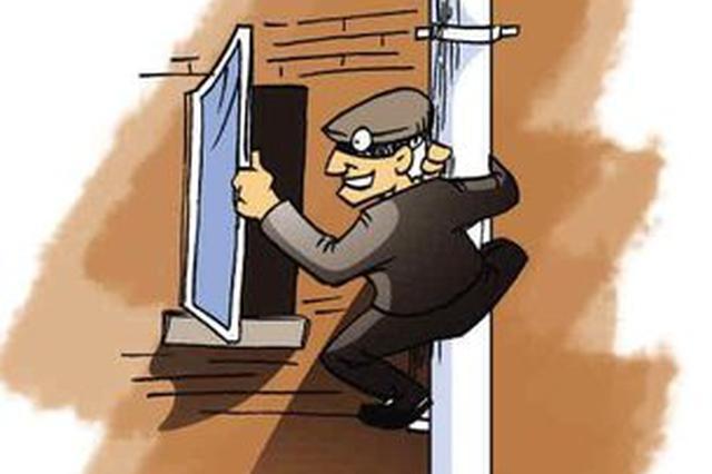 男子盗窃手机 网购女性衣物暴露身份