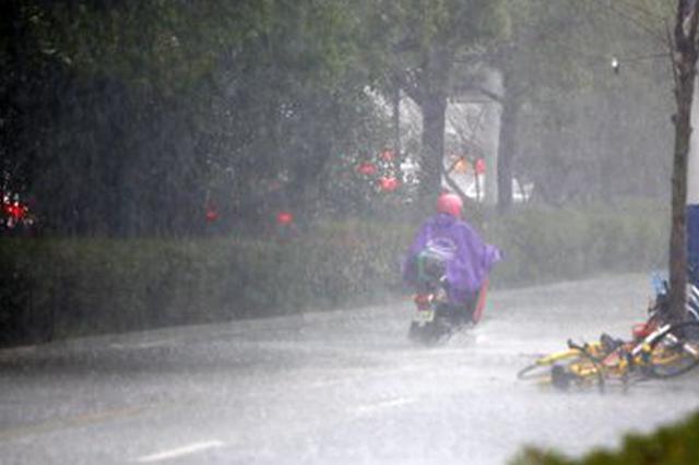"""台风""""安比""""携带风雨袭皖 安徽省局地暴雨"""