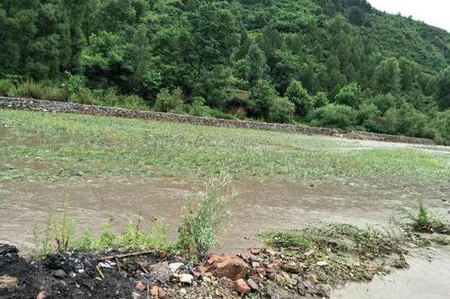 连续降雨致阜阳市3万余亩农田受涝