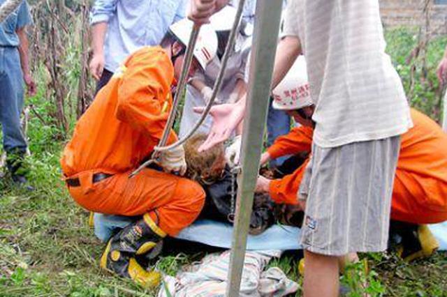 安徽一养老院17名老人被困 消防员抱着老人到安全地