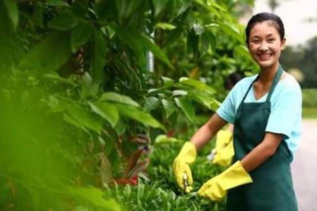 合肥市物业服务质量评价标准发布