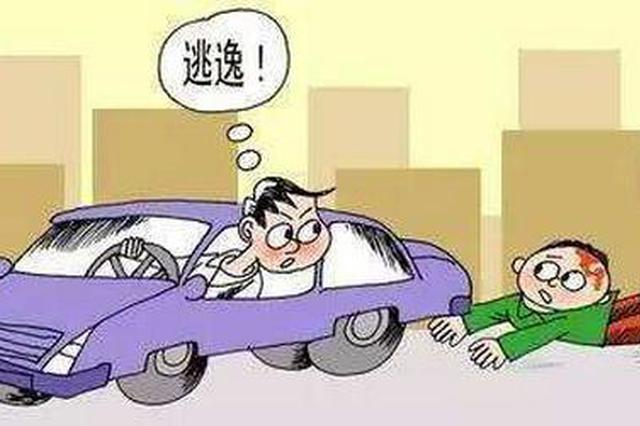 驾驶无牌电动车撞伤行人后逃逸 舒城一男子被批捕