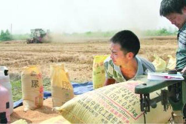 安徽省启动秋粮托市收购 最低收购价较去年下调