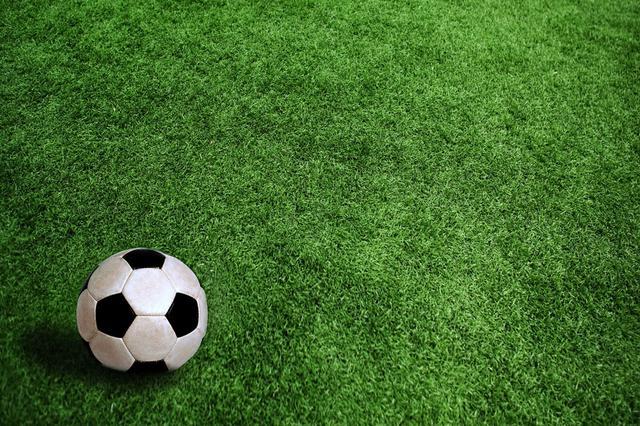 安徽成立校園足球專家委員會 促進校園足球文化建設