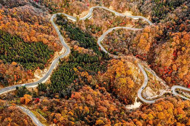 六安:秋色染红大别山 红叶美景入画来
