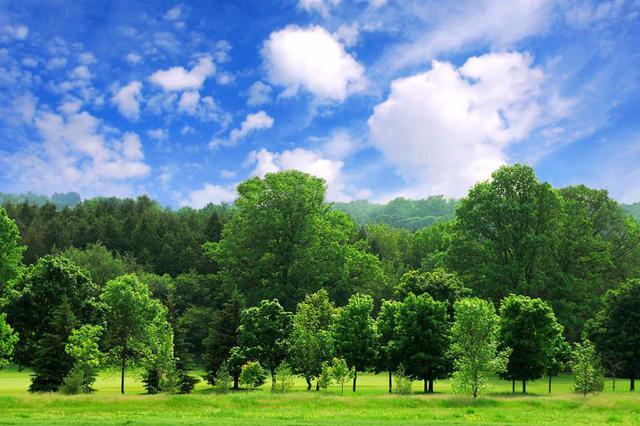 芜湖市扎实推进净土持久战获生态环境部表扬