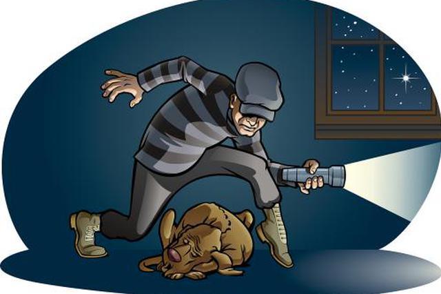 一对赌友偷贵重金属还赌债 盗窃过程堪比大片