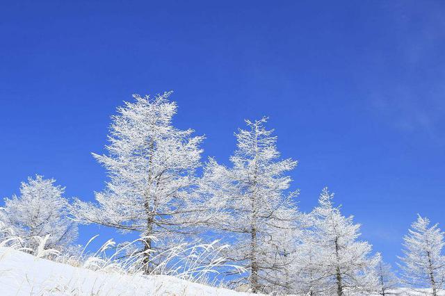 7-8日 安徽南部等地有大雪到暴雪