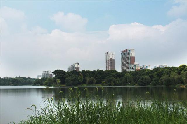 安庆突出环境问题整改成效明显