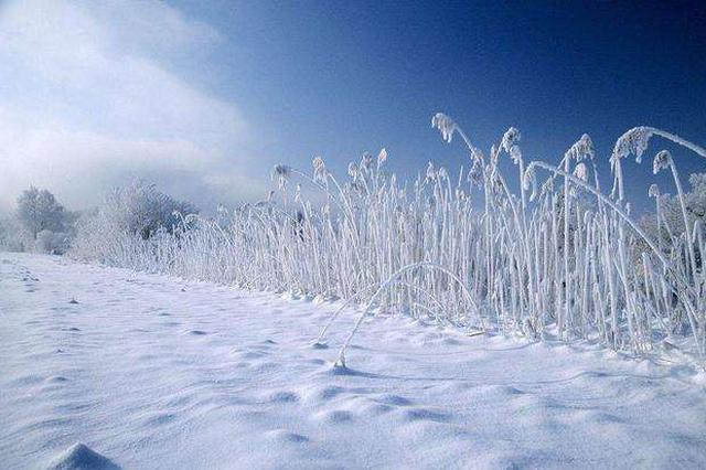 8号起安徽部分地区将有大到暴雪