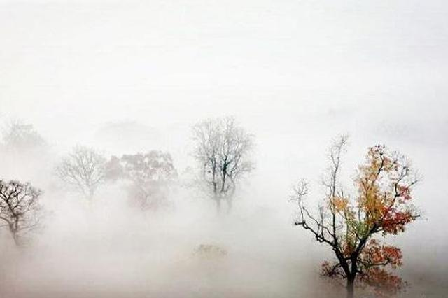 安徽:连续四天大雾  出行受影响