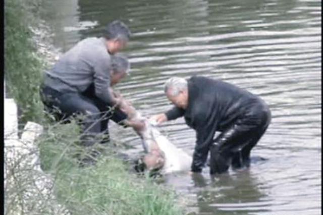 民警跳水施救老人落水