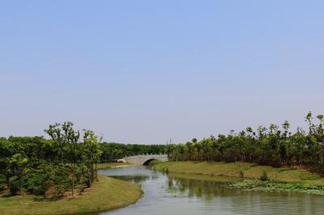 肥东将建圩田国家级湿地公园