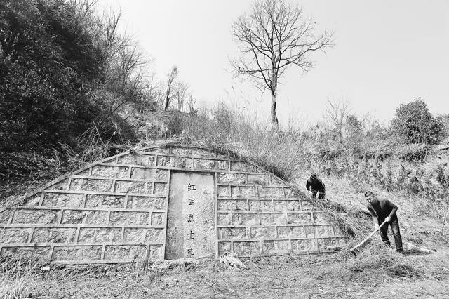 金寨县一家四代接力义守红军墓85年