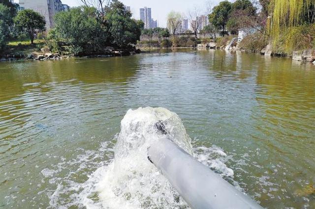 芜湖西洋湖里竟排污水 西洋湖排污怎么回事