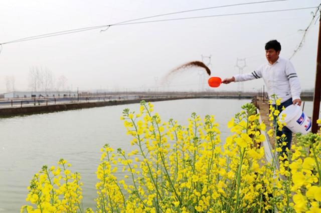 """特色水产养殖 让渔民鼓起""""钱袋子"""""""