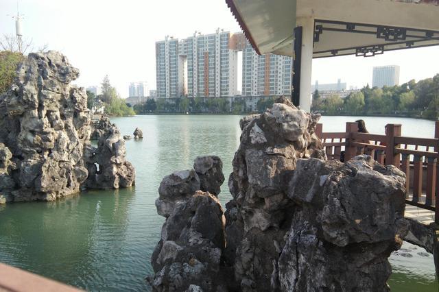 春日里的瑶海公园