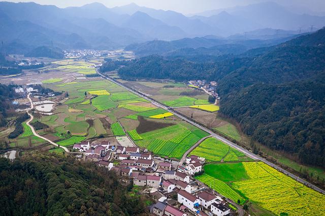 """芜湖霭里:十里油菜盛开绘自然之""""爱"""""""