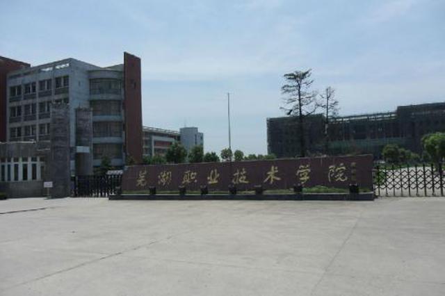 安徽第一所国际产业学院正式落户芜湖职业技术学院
