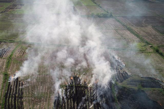 安徽肥东县秸秆焚烧抬头 空气中烟雾缭绕