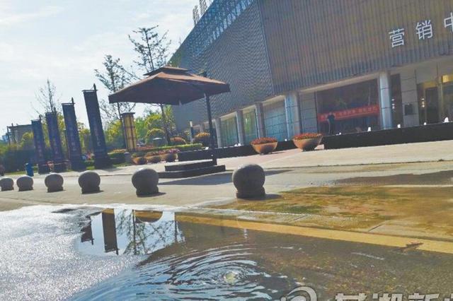 芜湖马仁山西路一污水井长时间满溢发臭