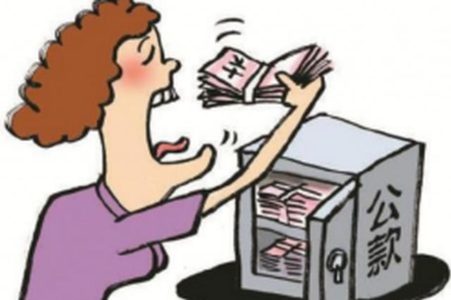 女会计挪用百万公款偿还网贷