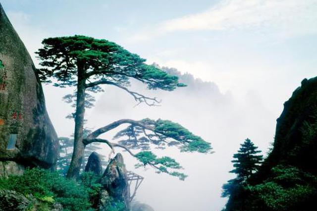 安徽——黄山景区多举措保障游客游玩体验