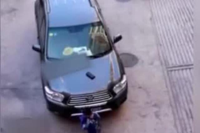 小学生在轿车旁捡到钱包 趴引擎盖边写作业边等失主