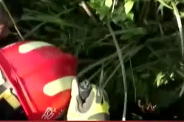 安徽池州:女子采茶不慎掉落20米深洞  消防紧急救援