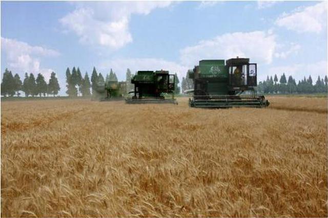 安徽省农民可享这些强农惠农富农政策