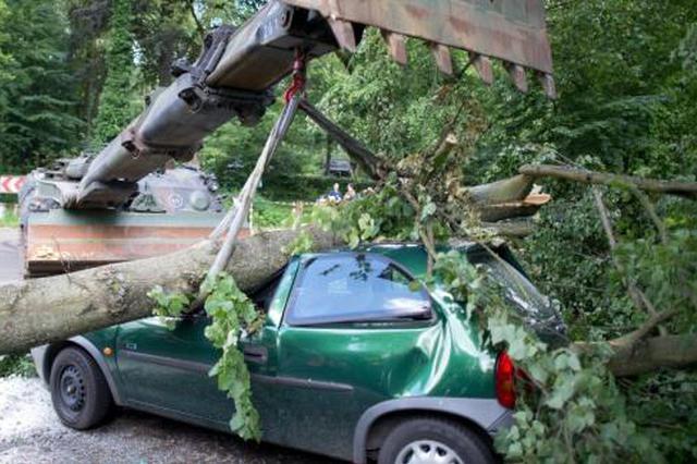 昨日凌晨合肥三十岗乡道 三轮车撞树致一人死亡