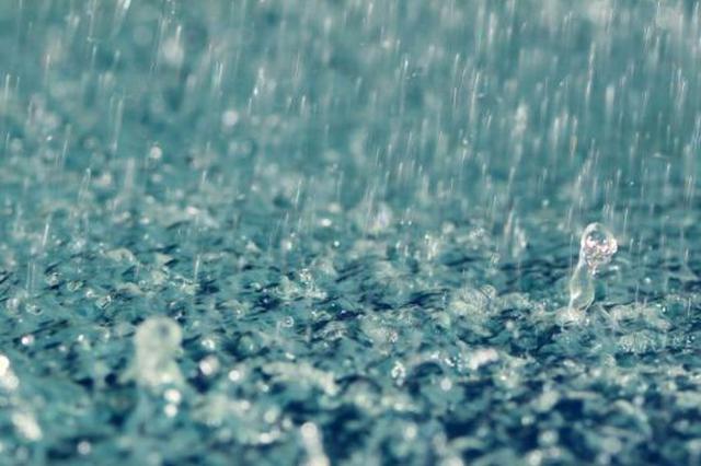 阜阳:周末这场雨 对麦收影响不大