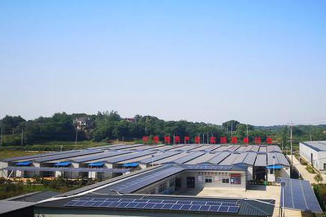 望江这个扶贫产业综合体 一亩地产生了六亩地的效益