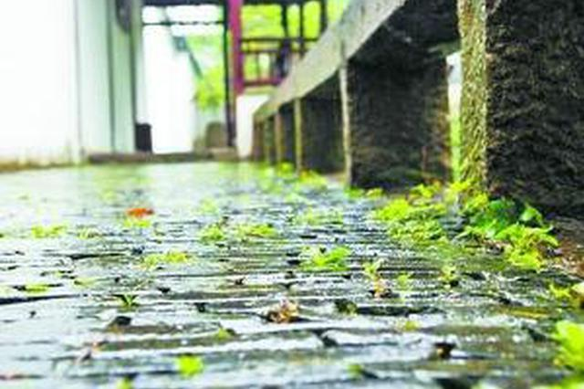 安徽本月17日起进入梅雨期