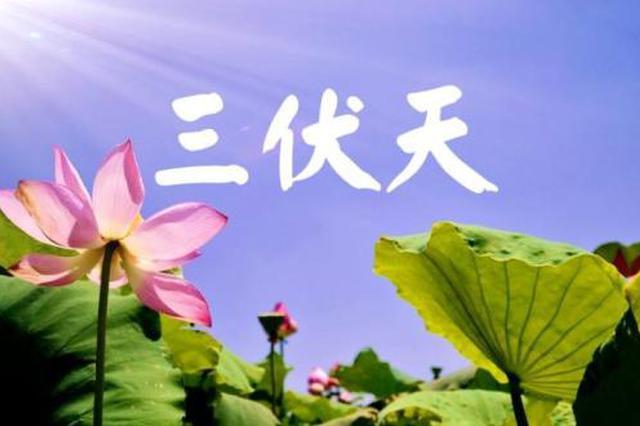 """7月12日""""入伏"""" 今年""""三伏天""""40天"""