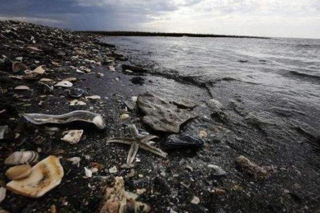 固废污染环境防治法迎大修 垃圾分类制度拟入法