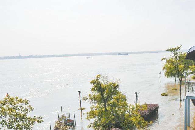 长江芜湖段水位昨首次超警戒线