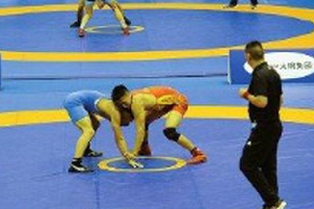 安徽拿下二青会摔跤项目二金