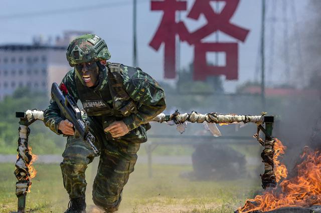 斗酷暑 练精兵 特战队训练堪比影视大片