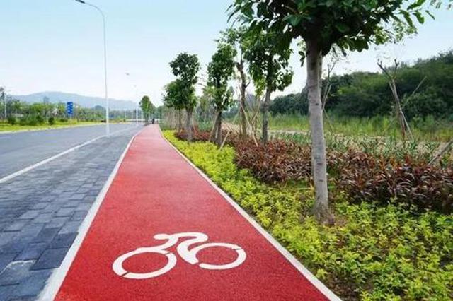 合肥政务区多个路口将改造慢行系统