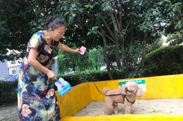 """合肥一社区倡导文明养犬 小区设宠物""""公共厕所"""""""