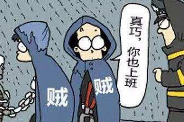 """偷了手机乘高铁仓皇逃离 合肥民警在半路""""截停"""""""