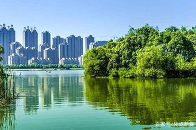 """生态合肥今年冲刺""""国际湿地城市"""""""
